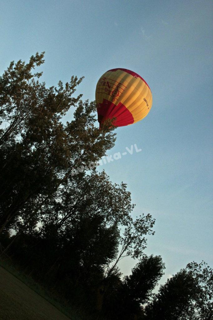 Воздушный шар над деревьями от Авионики-ВЛ