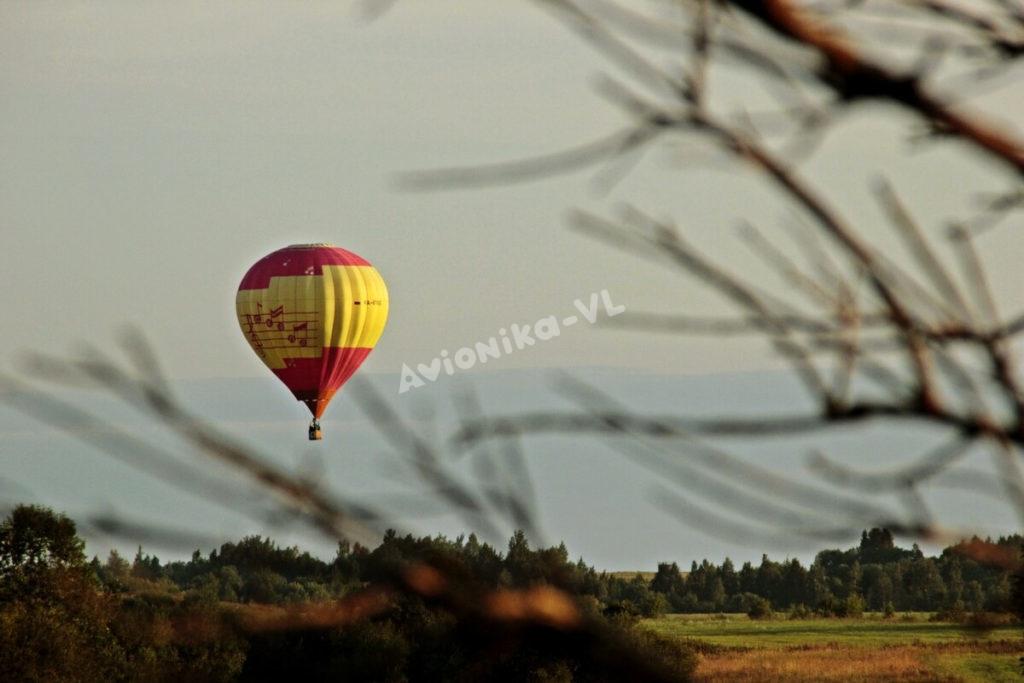 Полет на воздушном шаре вид из-за веток