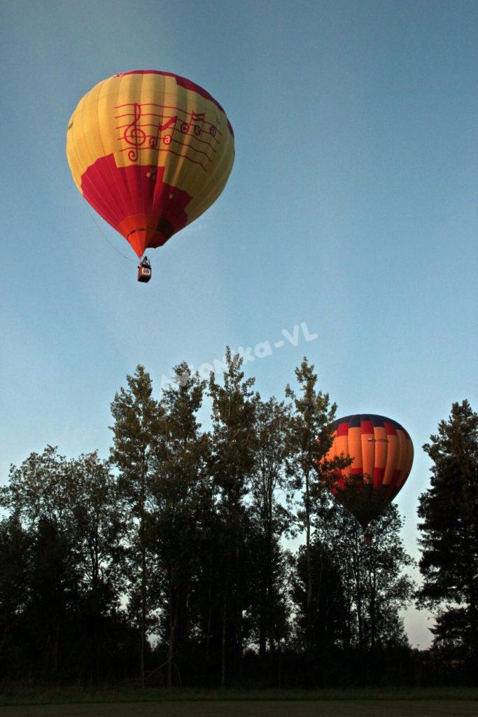 Воздушные шары над деревьями от Авионики-ВЛ