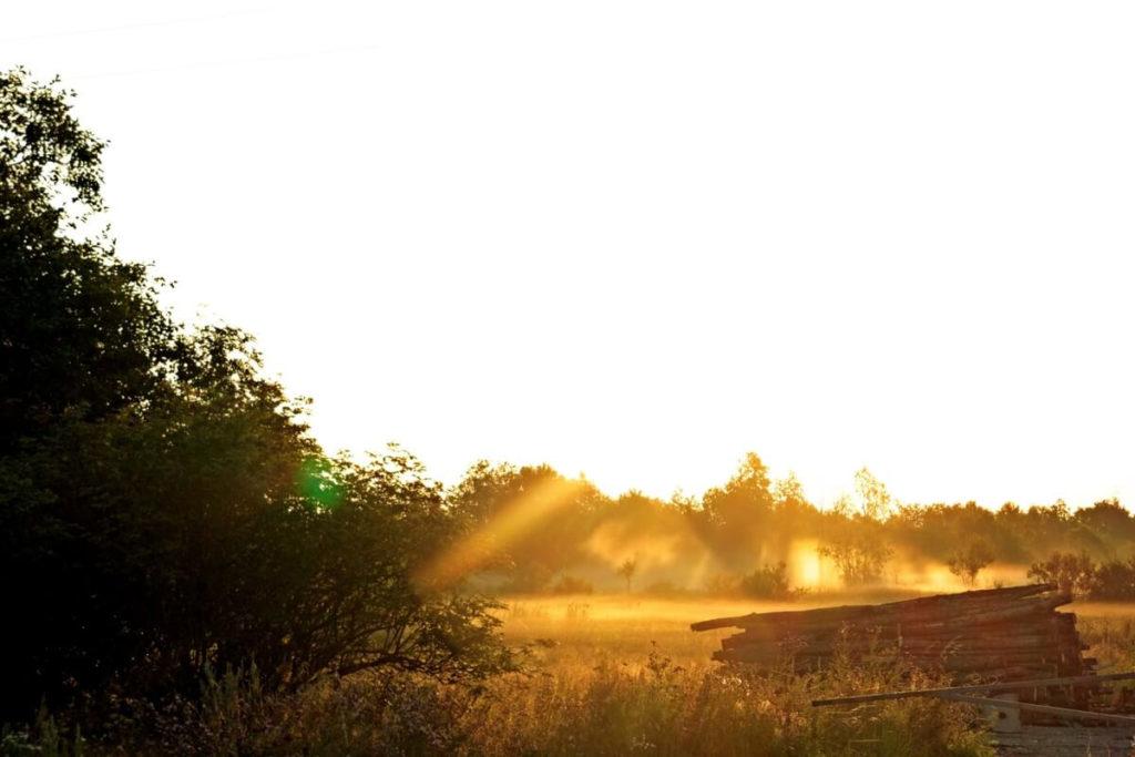 Утренний пейзаж в дымке